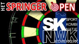 Logo Springer Open